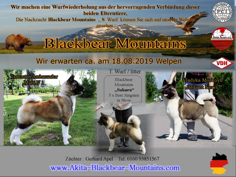 Kopie vonWurfwiederholung T Blackbear Mountains